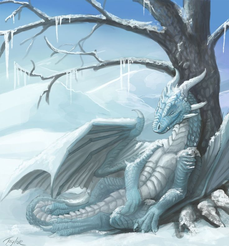 Drawn rock western dragon Images more on this Frost