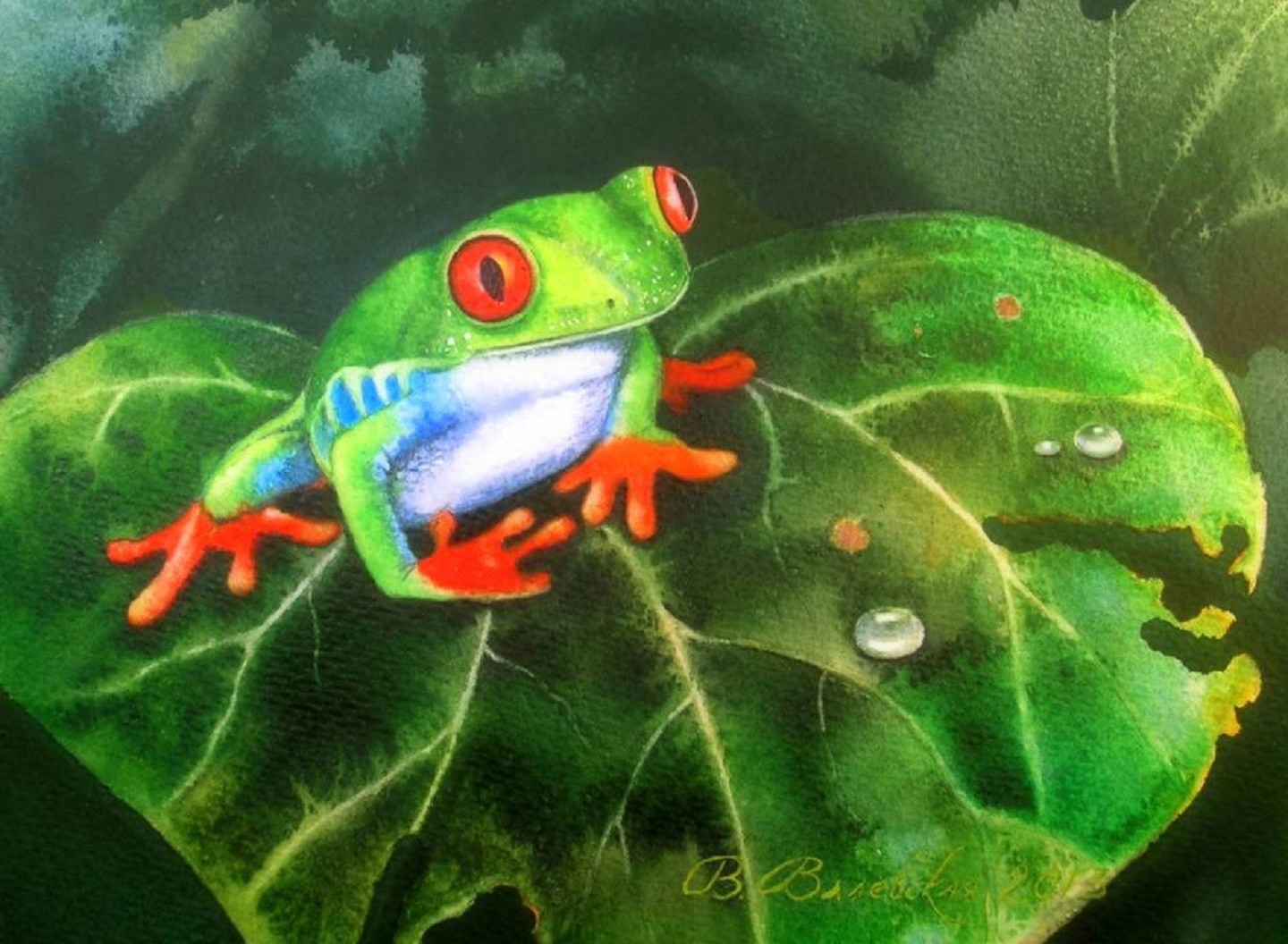 Drawn waterdrop love  Frogs Paint Waterdrops Four