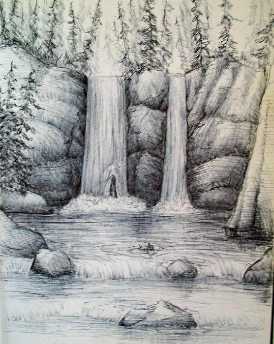 Drawn scenic forest Draw step draw How by