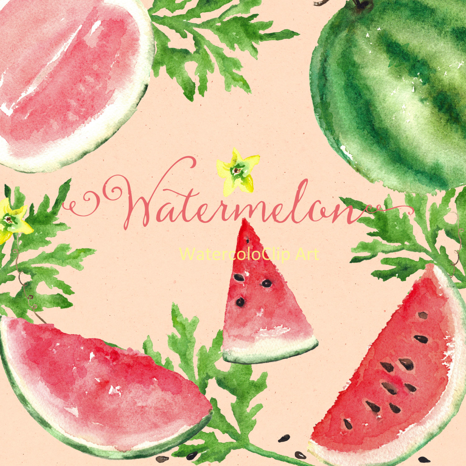 Watermelon clipart red fruit Digital clipart a file