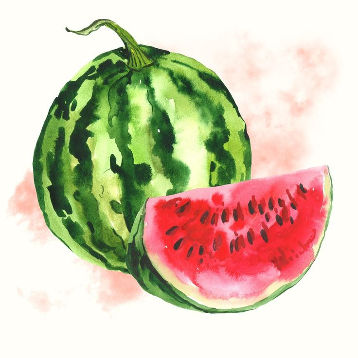 Drawn background watermelon Depiano watermelon Pinterest drawing The