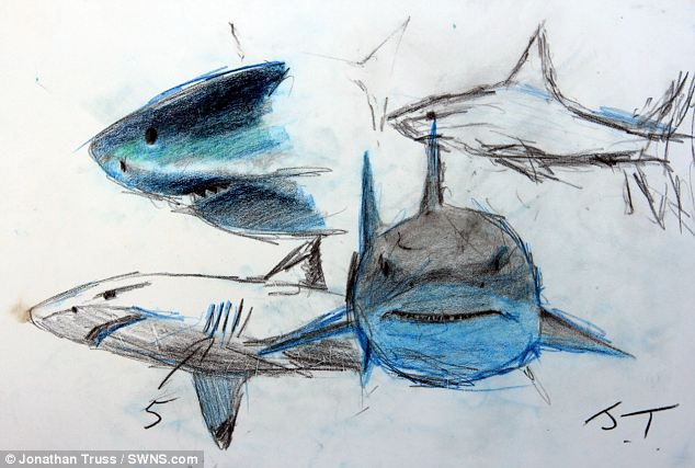 Drawn shark underwater Surface so Artist  goes