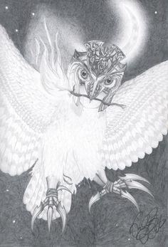 Drawn weapon guardians ga hoole EagleFlyte The Soren  Legends