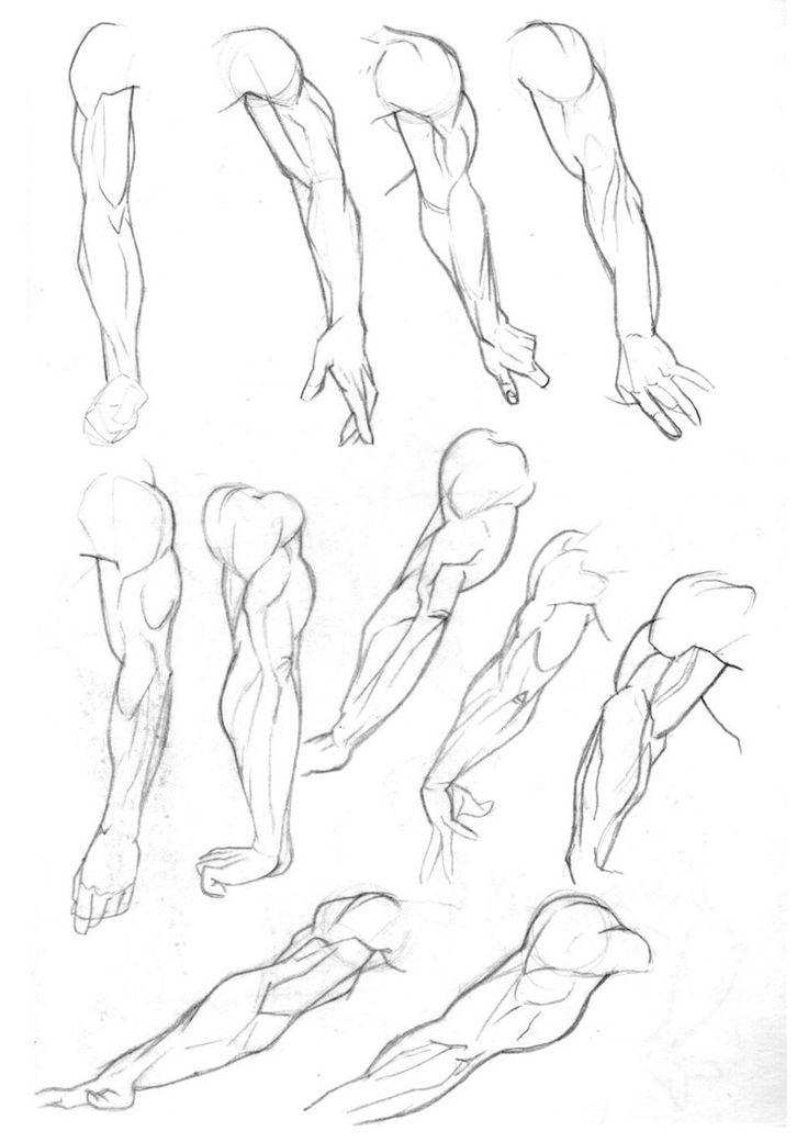Drawn mussel forearm Ideas Comic Best  drawing