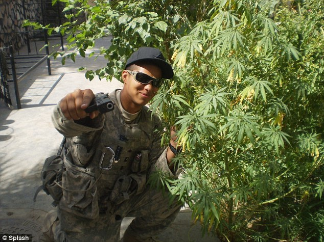 Drawn weed army And a Afghanistan weed and