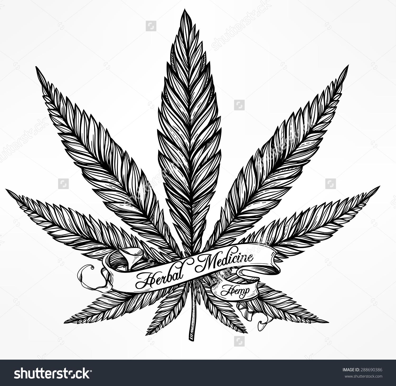 Drawn pot plant rasta #Designed cannabis #spankystudio vintage Drawing