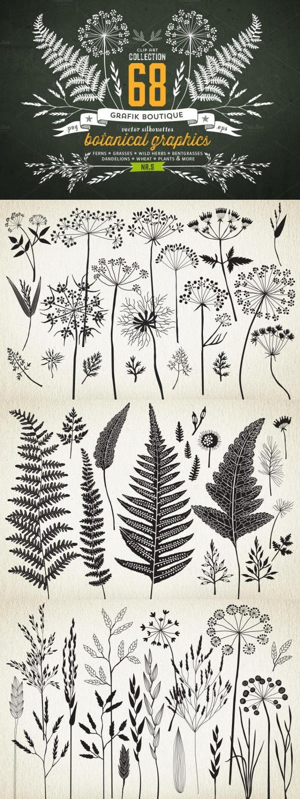 Drawn weed creative And Botanical 68 More planche