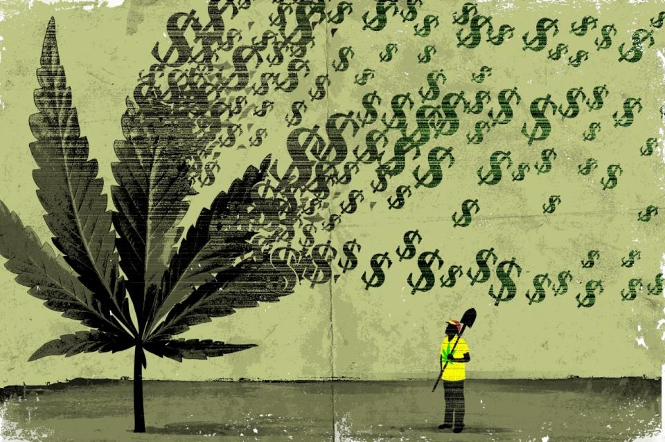 Drawn pot plant money sign The men Al America The