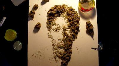 Drawn weed real Drawn Weed New Wiz (Amnesia