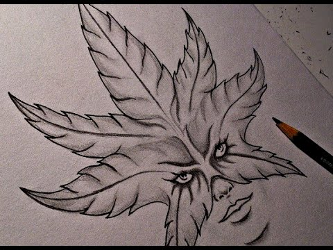 Drawn pot plant tribal YouTube Design) Blank Drawing Weed