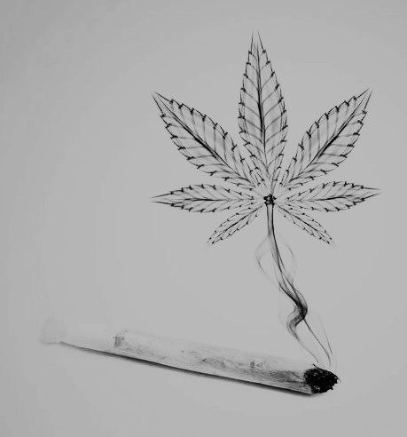Drawn pot plant high life Stoner Sup ideas 25+ on