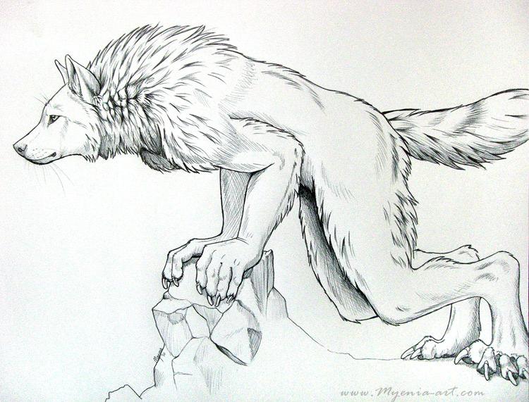 Drawn werewolf Leaning sarahfinnigan by by sarahfinnigan