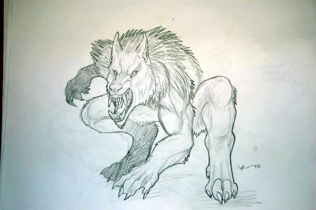 Drawn werewolf Drawing 8 on drawing 1