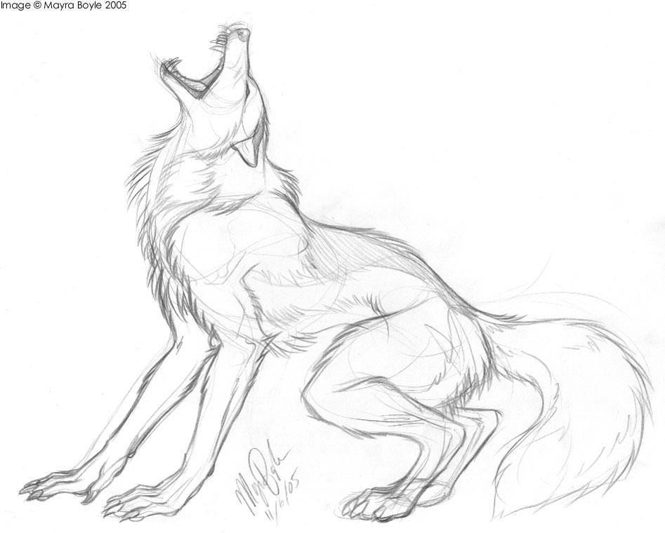 Drawn werewolf Snarling Lintufriikki by Werewolf by