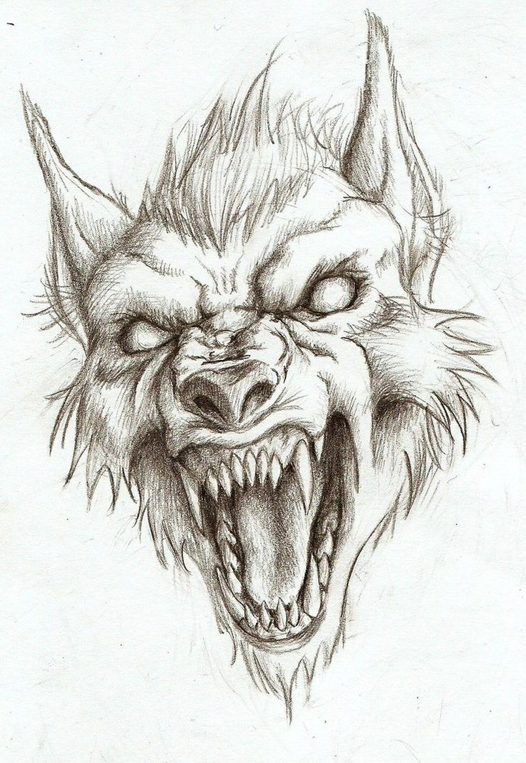 Drawn wolfman real life Art!) on Pinterest drawings ideas