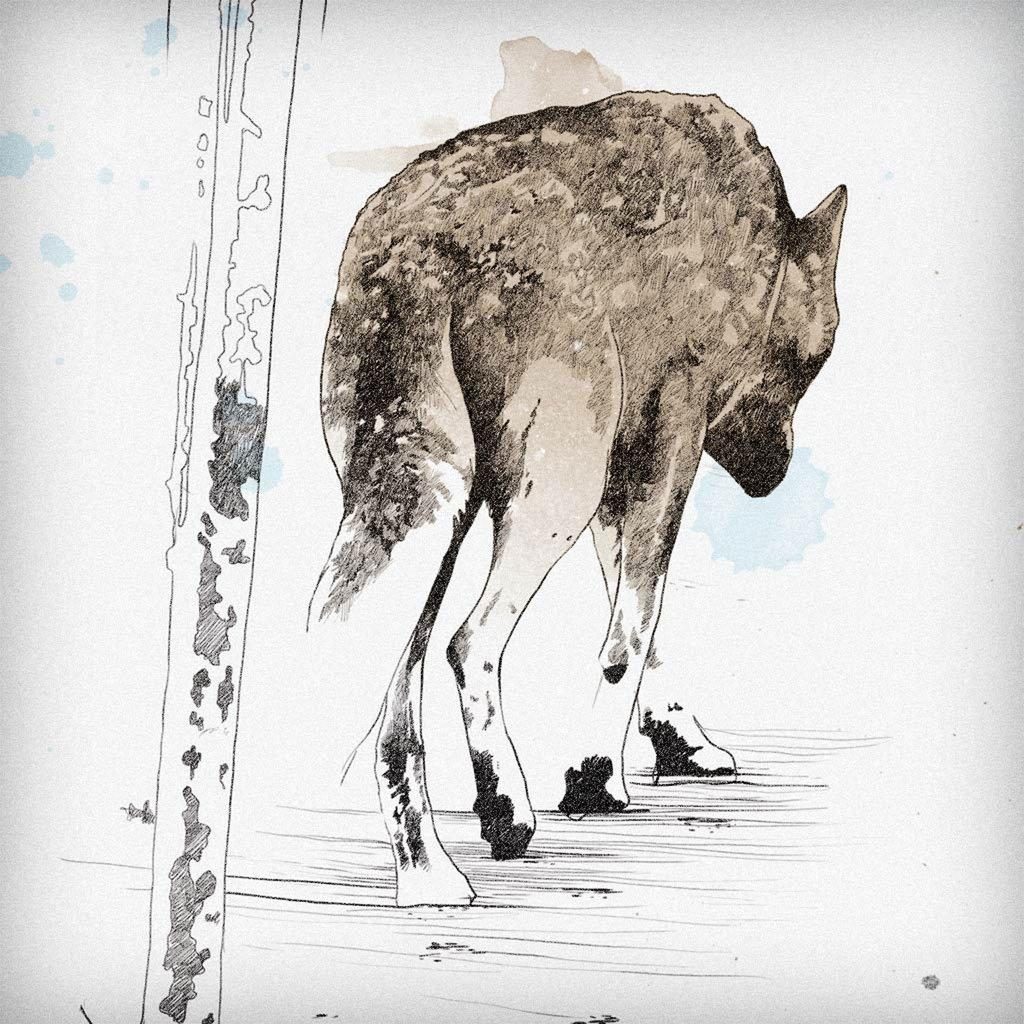 Drawn werewolf 28mm All #featured Skis