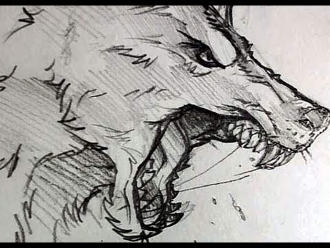 Drawn werewolf Step to to Head Werewolf