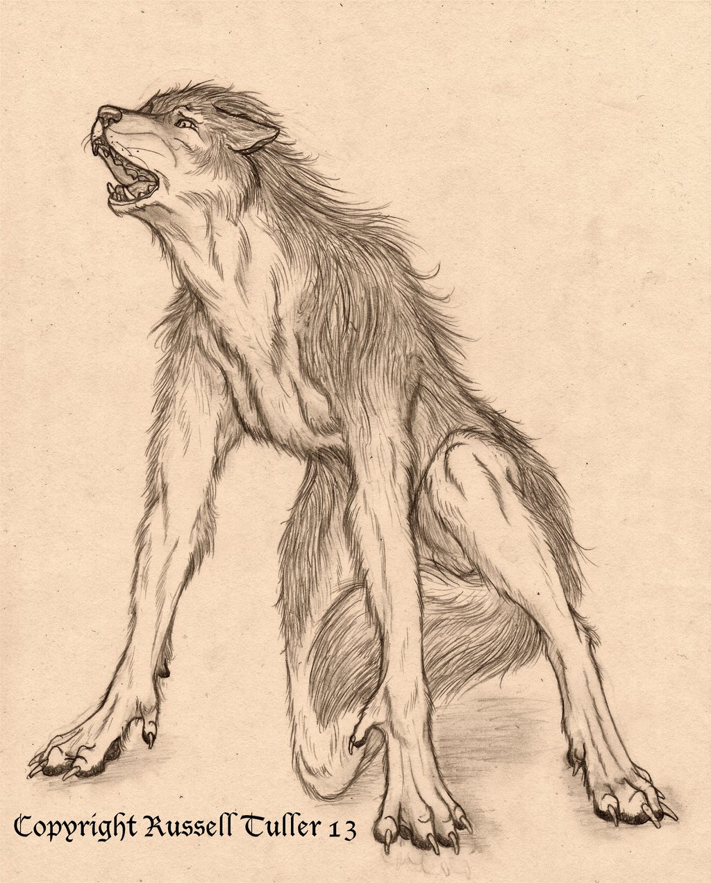 Drawn werewolf all fours 21 Katarsium Explore DeviantArt Werewolf