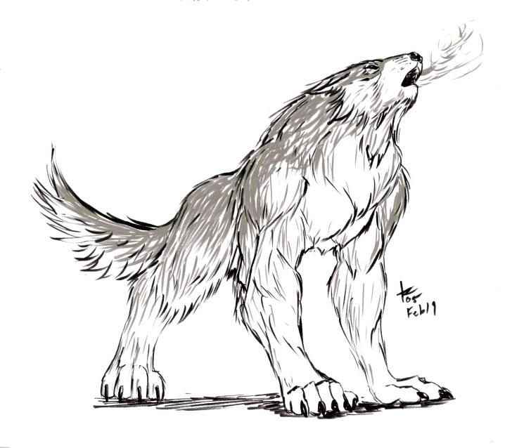 Drawn werewolf all fours Werewolf Quad by DeviantArt rwolf