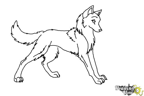 Drawn rat anime To Draw Wolves to Anime