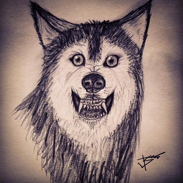 Drawn werewolf artwork Instagram art #sketch #wolf pencil