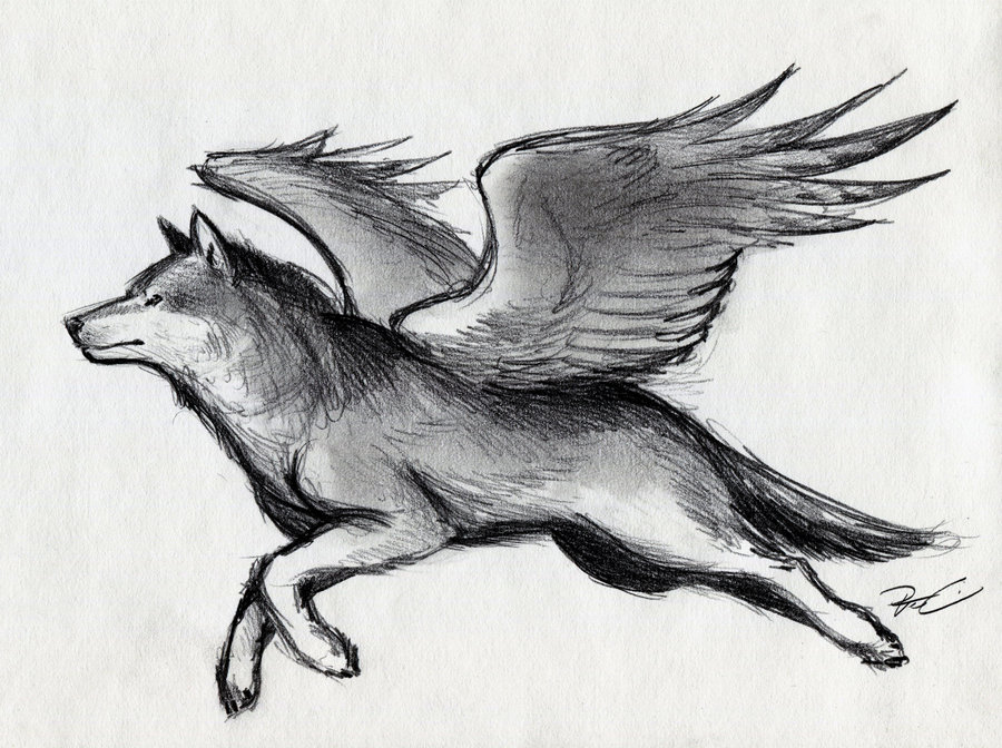 Drawn werewolf awesome Pinterest painting on images Pin