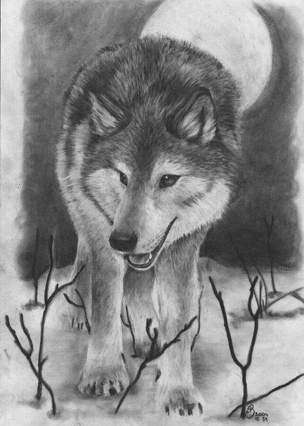 Drawn werewolf awesome Cool ideas Wolf wolf 25+