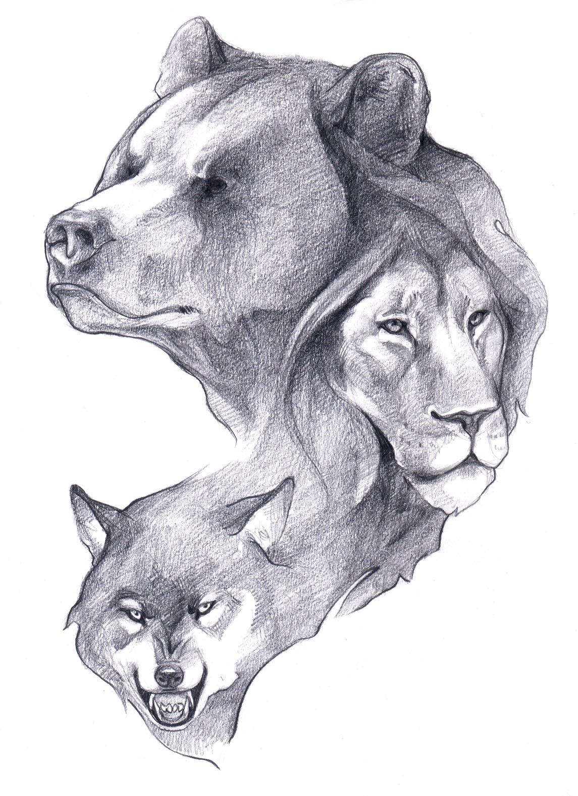 Drawn werewolf bear Head & and Head Wolf