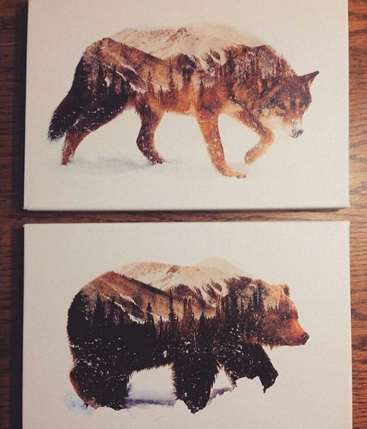 Drawn werewolf bear & & Bear w/ Inside