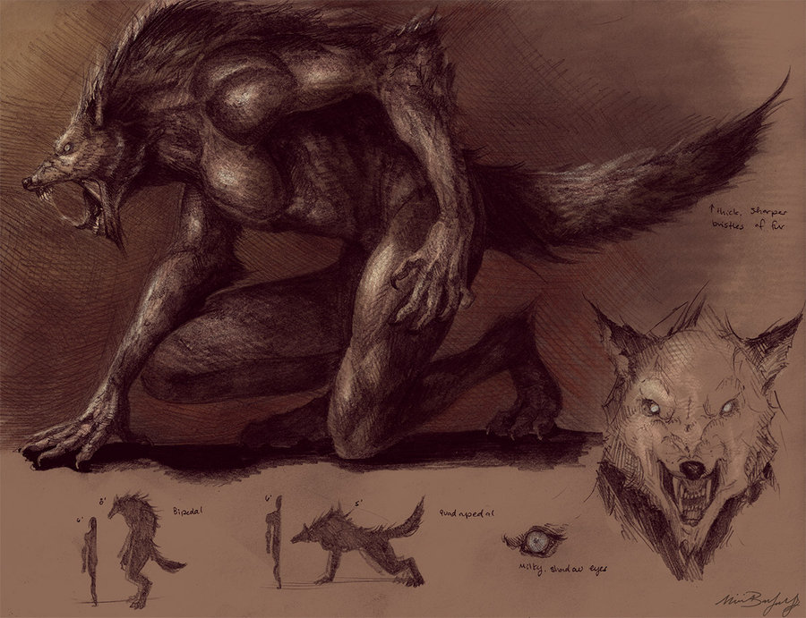 Drawn werewolf benandanti Madness 122 by best Concept