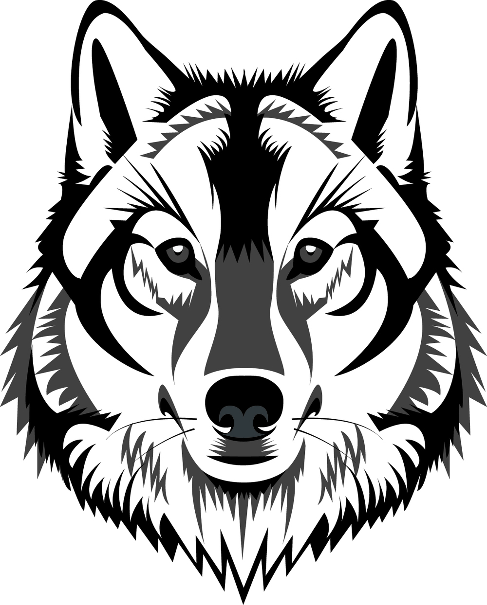 White Wolf clipart wolf head Drawing white photo wolf drawing