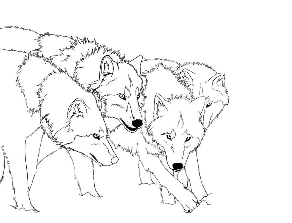 Drawn werewolf coloring page Realistic Pages Coloring Wolf Pages