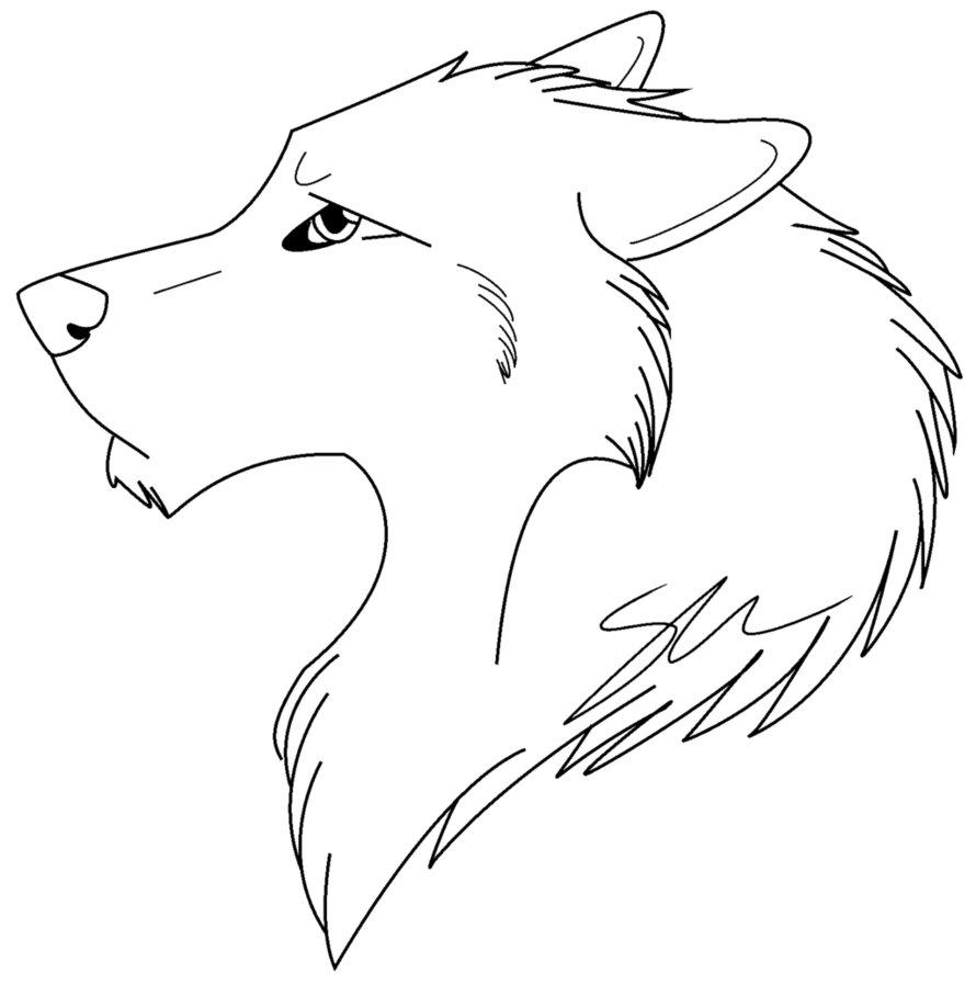 Drawn pitbull wolf Realistic on =Italian Wolf Wolf