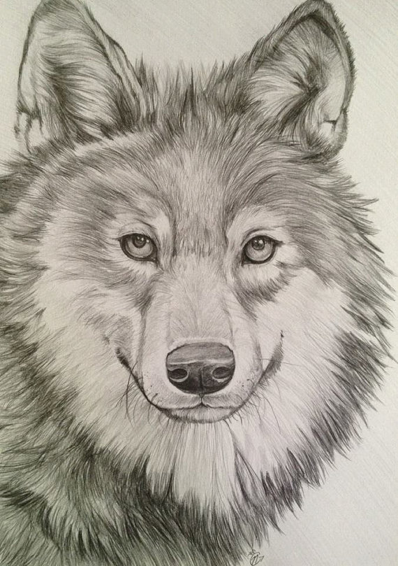 Drawn werewolf different Simple art 00 hand Search