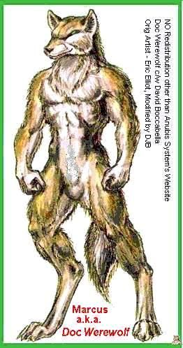 Drawn werewolf different Best Pinterest this 44 How