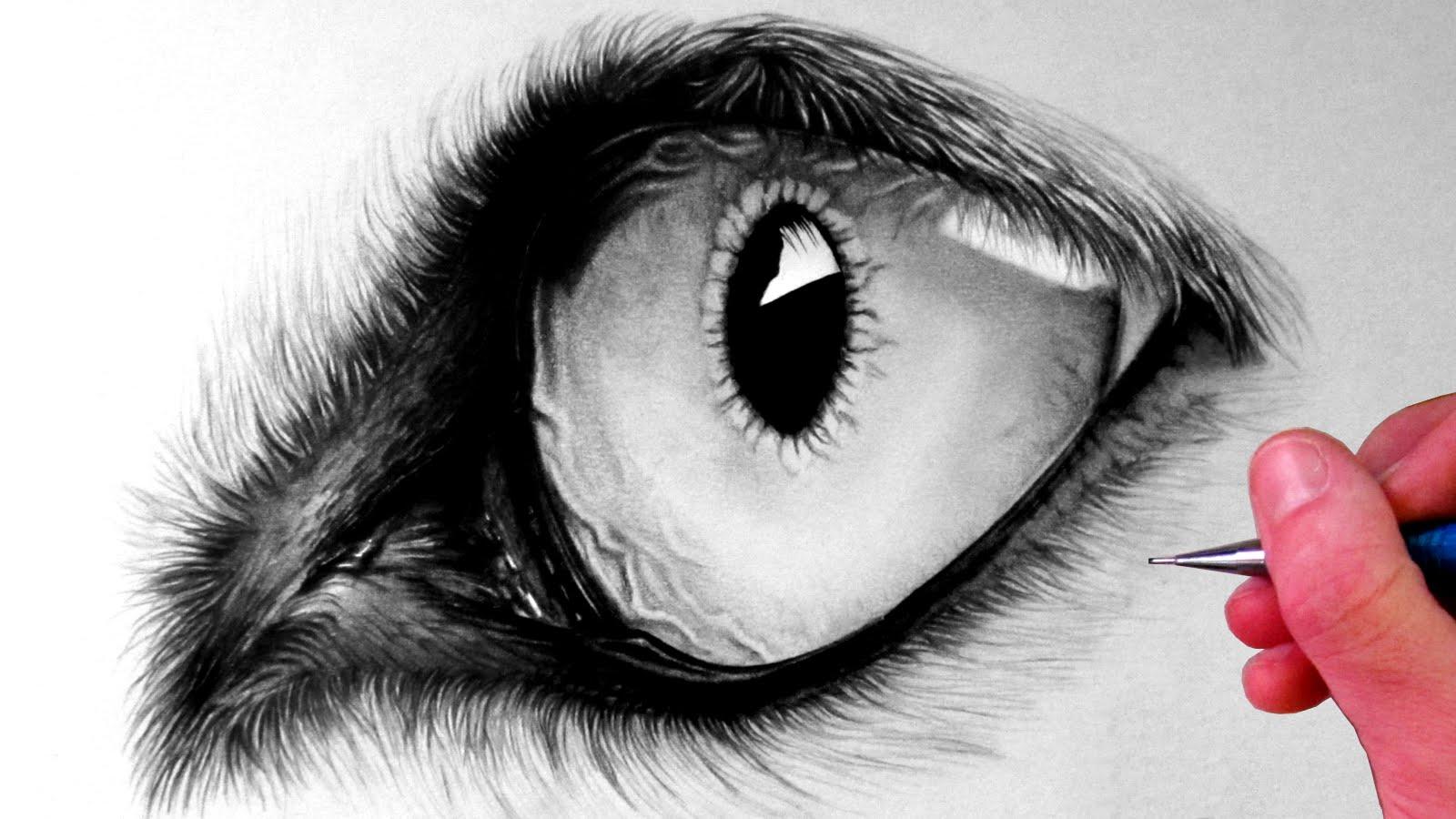 Drawn eye detailed #13