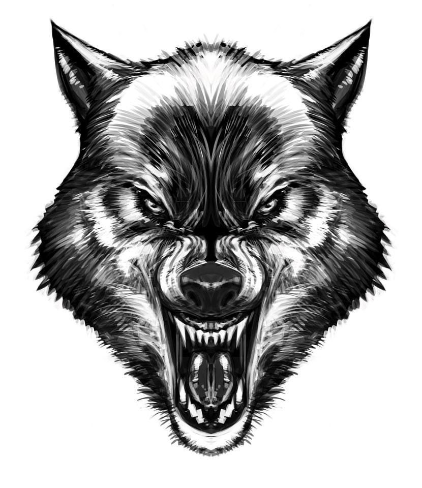 Drawn werewolf face Drawings Wolf Animals more! Pinterest