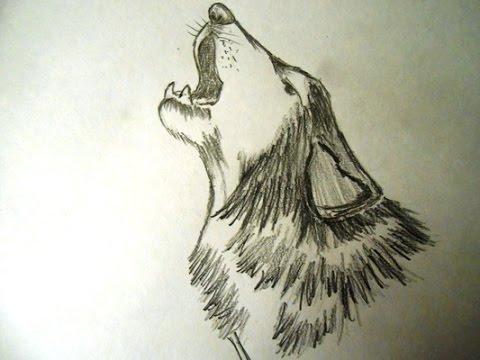 Drawn werewolf face Step head YouTube to wolf
