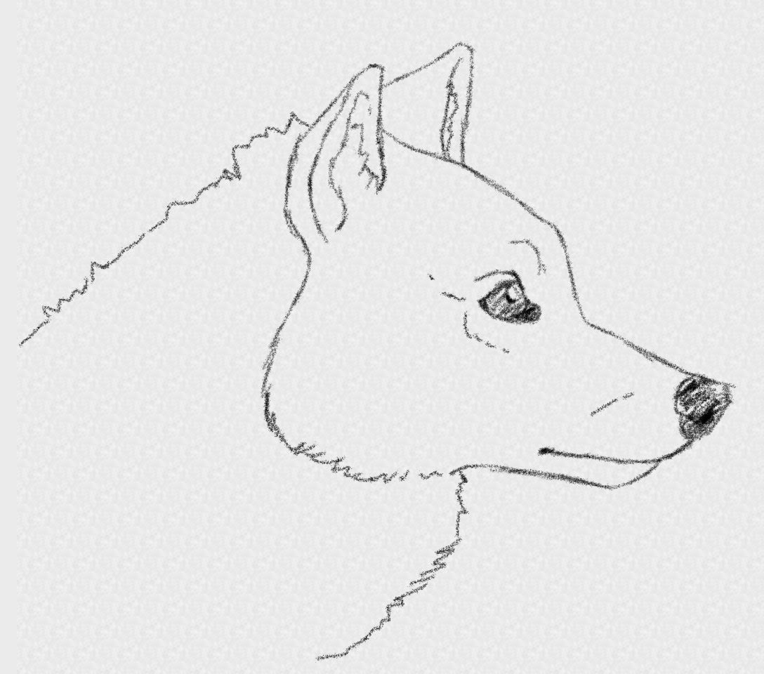 Drawn werewolf face Easy How Side Wolf View