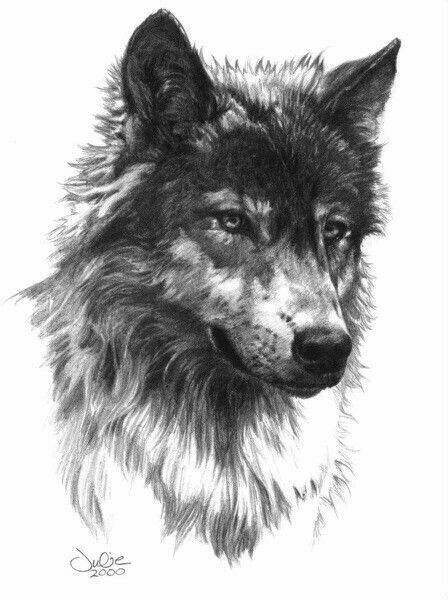 Drawn werewolf face Idea Best really on with