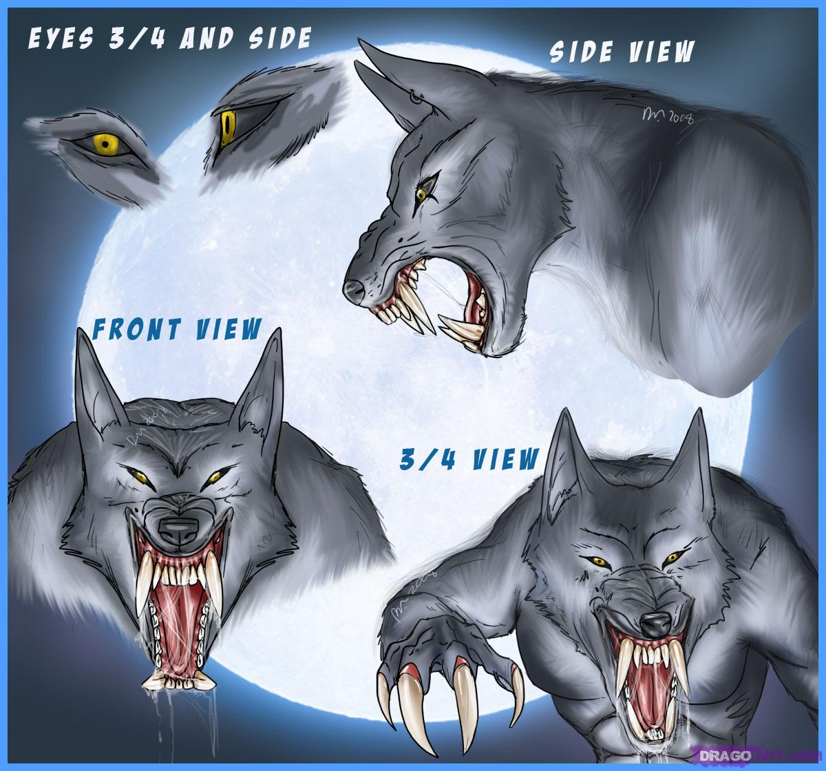 Drawn wolfman eye To Werewolves Step face How