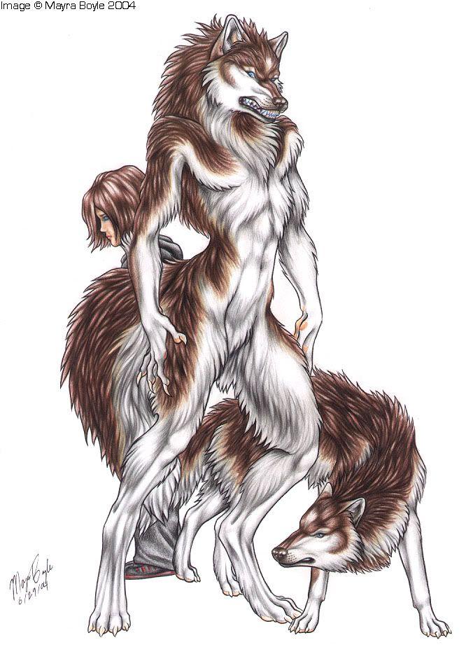 Drawn werewolf female werewolf Pinterest Female photo werewolf VeronikaMmish