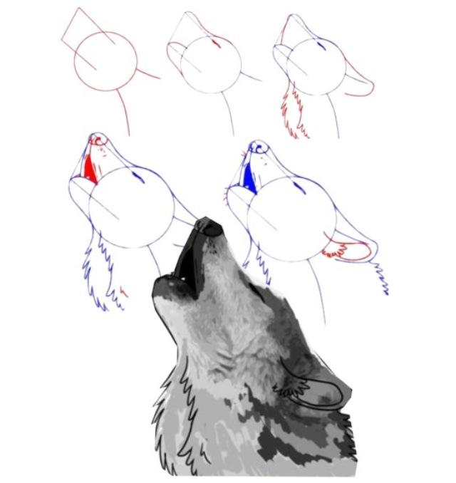 Drawn werewolf found This and Wolf] draw wolf