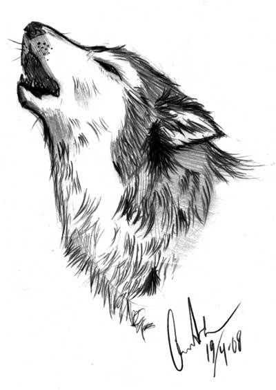 Drawn werewolf found And images on Wolf Wolf