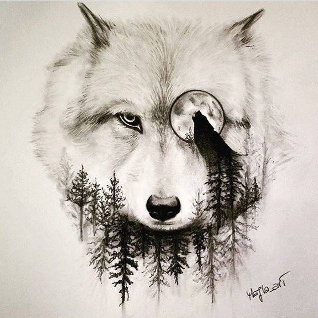 Drawn werewolf found And on on about Wolf