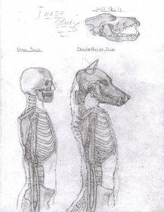 Drawn werewolf human Reference gos with deviantart is