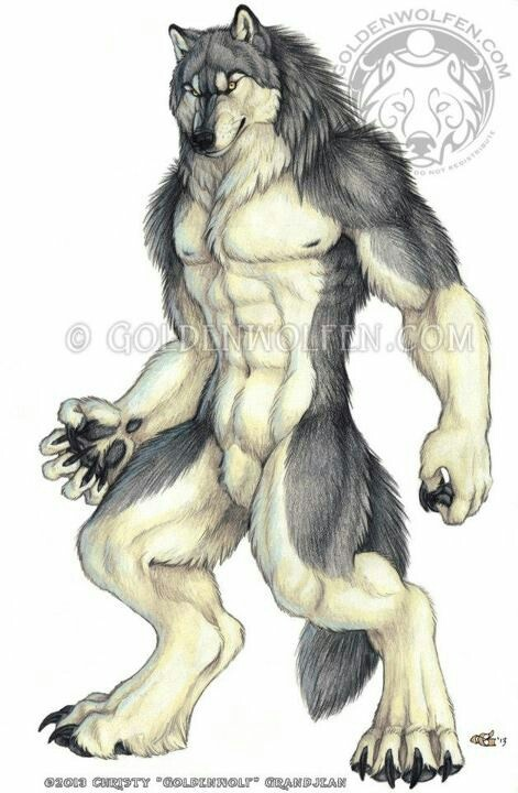 Drawn wolfman irish Werewolf 421 images Pinterest about