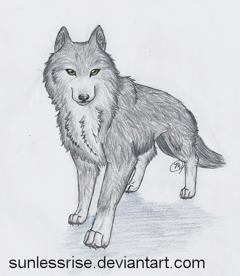 Drawn werewolf majestic Singapore: How simple Wolf Kaiser
