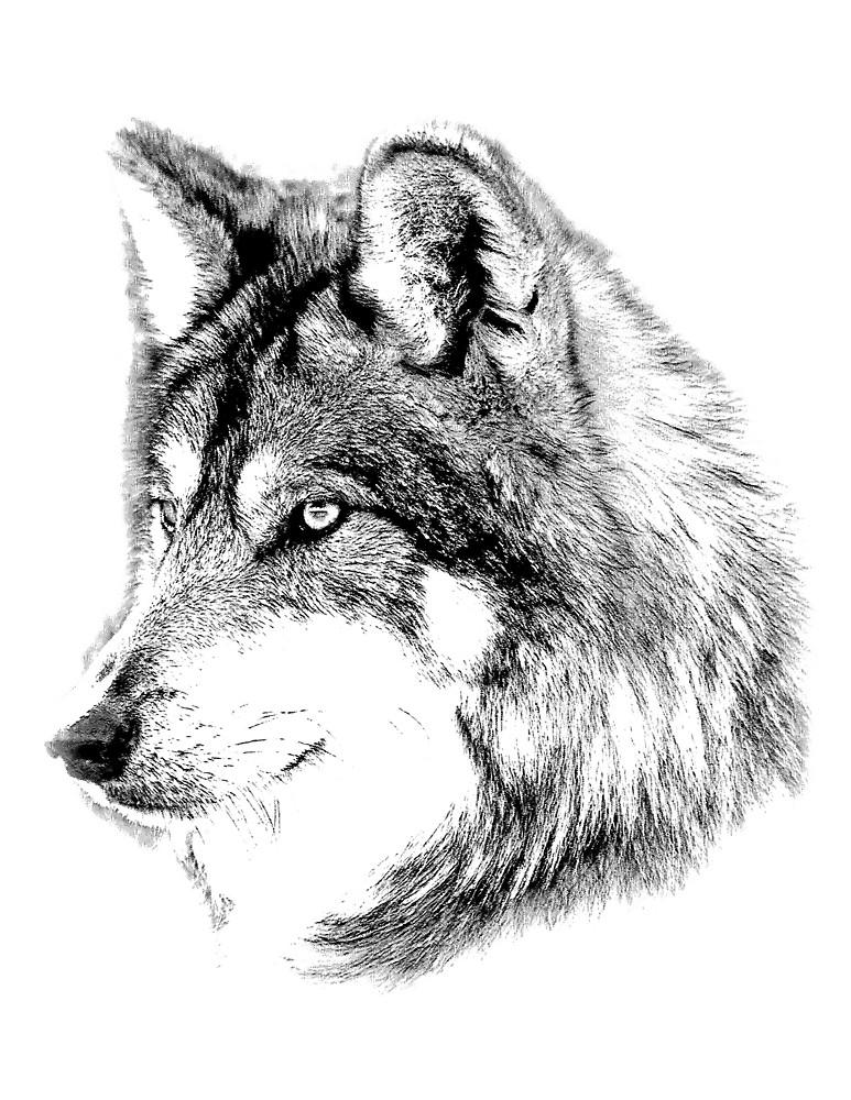 Drawn werewolf majestic Distance by Wolf by Gazes