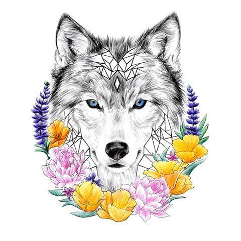 Drawn werewolf majestic #poppies #californiapoppies Majestic #tattoo Instagram